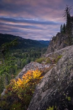 Payette National Forest, Idaho...I've camped here...absolutely breathtaking...