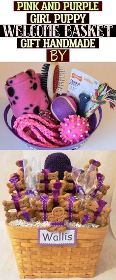 Pink and Purple girl puppy welcome basket gift handmade by Southern Dog Supplies Pink And Purple Girl Puppy Welcome Basket Gift Handmade By Welcome Baskets, Puppy Gifts, Basket Gift, Dog Supplies, Southern, Puppies, Handmade Gifts, Pink, Kid Craft Gifts