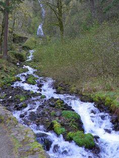 Wahkeena Falls, Oregon~ taken by Candy Morgan-Graves