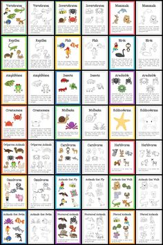 Animal classification this helps younger kids to get a visual of ...
