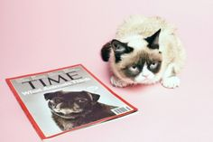 The Time - Grumpy Cat