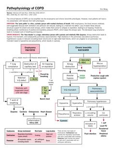 Pathophysiology of COPD   McMaster Pathophysiology Review
