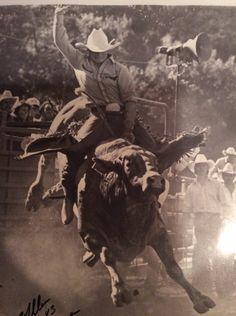 Invinci Bull Helmets | Bull Riding | Pinterest | Bull ...