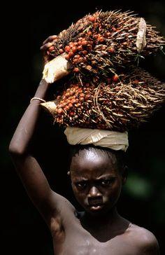 Guinea Bissau 25 by plastikmodels.deviantart.com