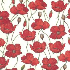 Made In Italy Authentic Florentine Paper Rossi Poppies  R241