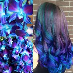 Blue Dendrobium Orchids Hair Color - New Hair Design Cute Hair Colors, Pretty Hair Color, Bright Hair Colors, Beautiful Hair Color, Hair Dye Colors, Colourful Hair, Teal Hair, Green Hair, Violet Hair