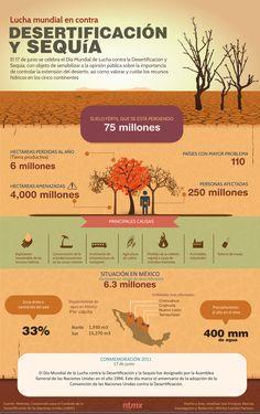 El 17 de junio se celebra el Día Mundial de Lucha contra la Desertificación y Sequía, con objeto de sensibilizar a la opinión pública sobre la importancia de controlar la extensión del desierto, así como valorar y cuidar los recursos hídricos en los cinco continentes.