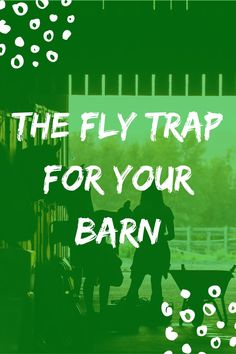 These summer keeping flies off your animals will be a no brainer! #flytrap #reduceflies #flyrepellent #barns #farms #outdoors #animalcare Get Rid Of Flies, Fly Repellant, Fly Traps, What To Use, Outdoor Areas, Pet Care, Barns, Outdoors, Summer