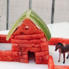 Dahl House: Watermelon Homestead by Timothy + Laura Dahl of Built By Kids