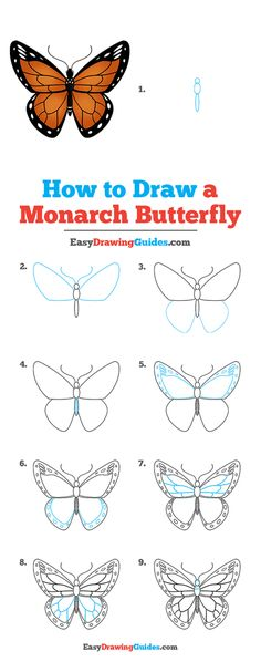 Butterfly Painting Easy, Butterfly Art, Monarch Butterfly, How To Draw Butterfly, Simple Butterfly Drawing, Butterflies, Drawing Tutorials For Kids, Easy Drawings For Kids, Drawing For Kids