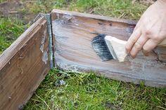 Del 1: Att odla i pallkrage är både enkelt och praktiskt. Det passar dig som har lite mindre tid att ägna din trädgård, men också dig som vill slippa gräva, snickra eller böja dig hela vägen ner till jorden. Nu är det dags att påbörja årets pallkrageodling!