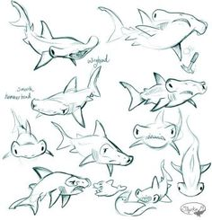 Draw Sharks Cutie Sharks : ⚓By - Sea Animals Drawings, Cartoon Sea Animals, Cartoon Drawings, Art Drawings, Shark Drawing, Doodle Drawing, Animal Sketches, Art Sketches, Animation
