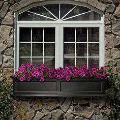 black window box