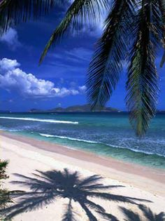 Long Bay Beach, Tortola BVI. Have a picture in the same spot as this.