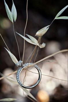 Rustic wedding photo engagement ring
