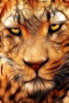 we love cats. Animals Beautiful, Cute Animals, Tiger Art, Tiger Tiger, Lion Art, Cat Tattoo, Fractal Art, Big Cats, Cat Art