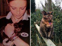 #12 Nossa linda e mandona Cassie morreu repentinamente 3 anos atrás. Nós ainda sentimos falta dela. Aqui estão a primeira e a última foto que tirei dela.