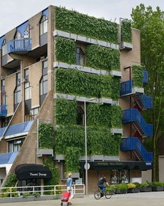 The dense foliage within the WallPlanter system works hard filtering the air in busy urban areas, improving the air quality and removing harmful pollutants from the surrounding neighborhood. Vertical Plant Wall, Indoor Plant Wall, Indoor Garden, Green Facade, Living Environment, Sustainability, The Neighbourhood, Planters, Building