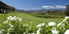 Balgownie Estate during Spring