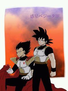DBZ / Goku and Prince Vegeta