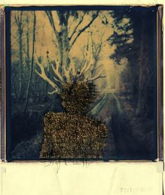 Polaroid macabre
