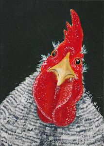 """Here Looking At You, Kid"" - Cristina Del Sol (mixed media and collage) Fancy Chickens, Chickens And Roosters, Pet Chickens, Chickens Backyard, Rooster Painting, Rooster Art, Chicken Painting, Chicken Art, Hens And Chicks"