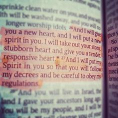 """""""and i will give you a new heart, and i will put a new spirit in you..."""" ezekiel 36:26-27"""