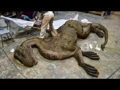 """False Claim: A video shows a real dragon that fell from the sky in Tibet.  the figure shown in the video is not a dragon, but a dragon sculpture created for Cuarto Milenio, a Spanish television show that explores conspiracy theories, mythical creatures, and cryptozoology.  The dragon sculpture was used for a scene in a fabricated """"documentary,"""" similar to ones aired on Bigfoot, mermaids, and the return of Megalodon,"""