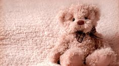 teddy bear with bow