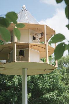 Details about diy dovecote building plans build you own for Dove bird house plans