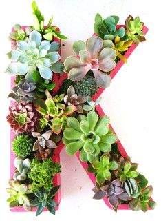 Succulent Monogrammed Planter Box by Rooted in Succulents - contemporary - indoor pots and planters - by Etsy