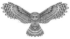 the predator: hand drawn flying owl. Black and white art.