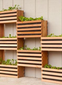 Make a Vertical Garden