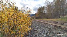 Fall on the CN Railway. Photos taken on September 16, 2016 Houston, BC. Photos by Brian Vike Houston, British Columbia.