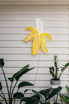 Neon banana amidst greenery