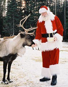 santa, reindeer