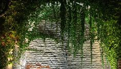 overgrown alcove