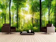 Laundry Room - Forest Panoramic with Sunbeams wall mural room setting