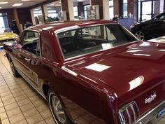 1964 Mustang in the Stuart Powell Showroom #pontiacG6 #windscreen http://www.windblox.com/