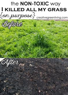 The Non-Toxic Way I Killed All My Grass (On Purpose!)         ~          Creative Green Living #DIY-Crafts