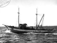 motopeschereccio con 2 motori A trawler with 2 engines AR1627 M.A. : 1958