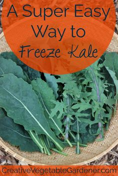 If you freeze your extra kale this summer you won't have to buy any from the store this winter!