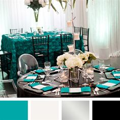 Teal, White, Silver and Black Color Palette