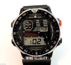 Citizen D060 Windsurfer Chronograph Quartz Watch