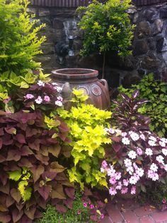 Pots and planters at Longwood Gardens: Part II – HORTUS There is life after retail Indoor Vegetable Gardening, Vegetable Garden Tips, Container Gardening Vegetables, Garden Container, Organic Gardening, Gardening Tips, Fall Planters, Garden Planters, Planter Pots