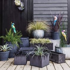 Weathered Metal Planters
