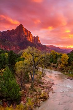 Zion National Park, Utah. Been Here, would love to go back! Not at 115 degrees again though.