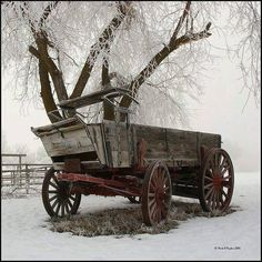 "We had a wagon like this on our farm growing up. My brother and I played in our ""wagon train"" wagon all the time. Good Memories for sure! Snow Scenes, Winter Scenes, Vieux Wagons, Hirsch Illustration, Looks Country, Wooden Wagon, Old Wagons, Into The West, Country Scenes"