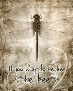 If you want to be free then be free.