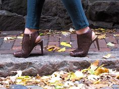 Fall Fashion on The Sol Compass
